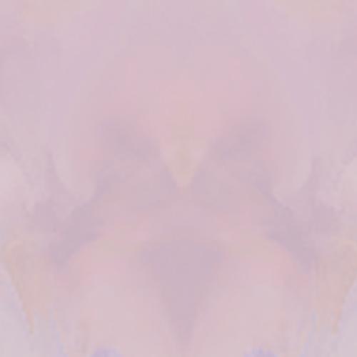 PinkShortTank-Back
